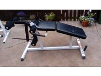 LEG EXTENSION / HAMSTRING CURL BENCH
