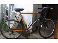 **DIAMOND BACK**BICYCLE**FULLY RIDEABLE**GOOD CONDITION**READY TO RIDE**