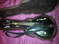 Ozark f hole mandolin