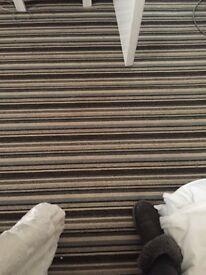 Livingroom grey carpet and underlay £25