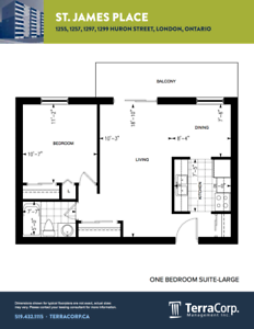 JULY OR AUGUST RENOVATED ONE BEDROOM SUITES London Ontario image 8