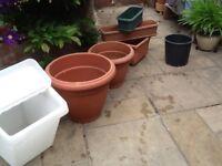 FREE job lot of plants pots plus IKEA storage bin