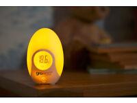 Gro-egg temperature monitor