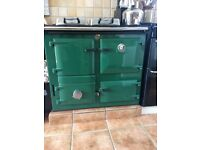 Rayburn Nouvelle, Racing green, Don oil conversion,