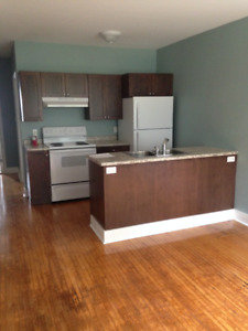 1 Bedroom Apt  for Rent in Shelburne (2 available)