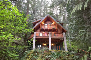 Mt. Baker Lodging - Cabin #47 - HOT TUB, BBQ, WIFI, SLEEPS-10!