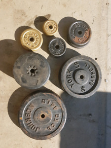 Metal Weights w/ curl bar and bench