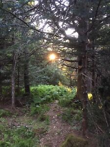 Land for sale Grand Manan NB