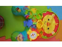 Fisher price tummy time