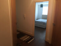Stunning 1 bedroom flat share to rent