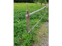 Walking Stick/Pole.