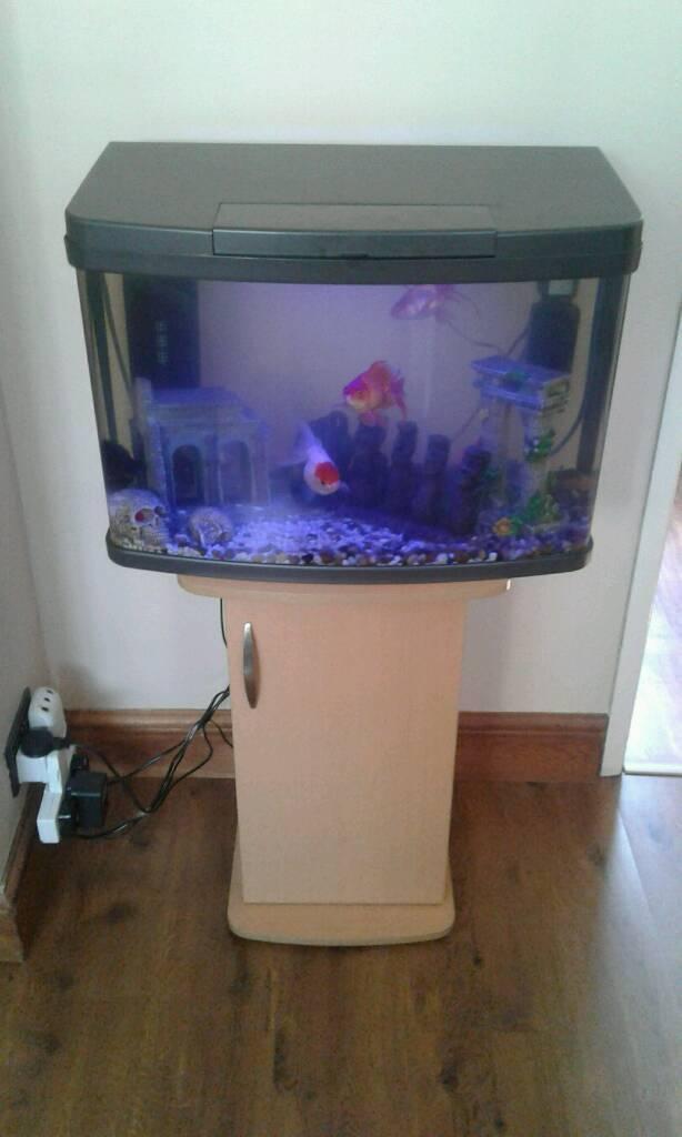 60 litres fish tank
