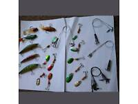 Fishing lures, traces, hooks, reel, line