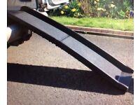Dog Car Ramp. Strong, lightweight, non slip, durable plastic.