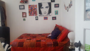 $600 BEAUTIFUL ROOM IN THE PLATEAU (PARC LAURIER)