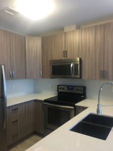BEAUTIFUL Fully furnished 1 bedroom and 1+ dens in 1 Victoria!