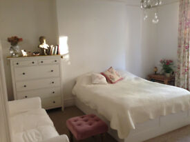 Large, double, bright room in beautiful cotham garden flat (mon-fri)