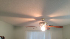 Casablanca ceiling fans with lights