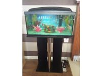 Tropical fish with tank and stand