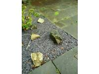 Garden stones large and medium sized