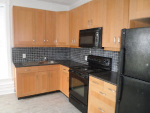 Georgetown Renovated 1 Bedroom Apartment in Century Home