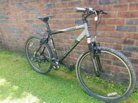 Adults trek mountain bike