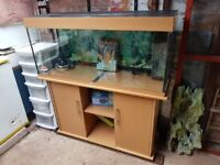 Jewel Rio 240 4FT Fish Tank and Stand