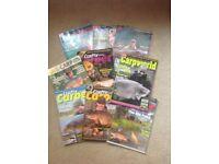 Carp magazines bundle