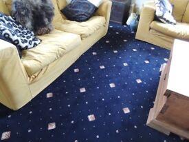 Excellent Quality Large Carpet