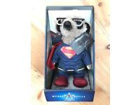Superman meerkat