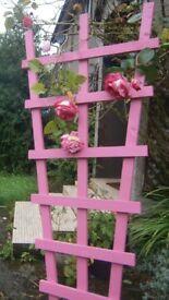 Colourful Garden Trellis For Sale