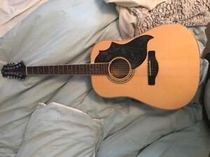 Acoustic/Electric12 String Hummingbird edition Greg Bennett