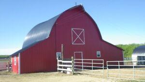 Economical Horse Boarding – Red Deer / Sylvan Lake