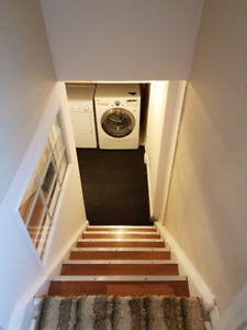 2 Bedroom Apartment in basement - RICHMOND HILL
