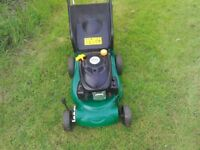 Petrol rotary Self-Propelled Lawnmower