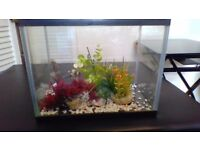 15 l GLASS AQUARIUM