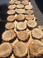 Wedding decor/ wood slices/ tree cookies