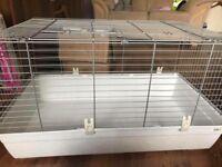 Guinipig cage