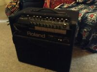 Roland Keyboard Amp KC 350