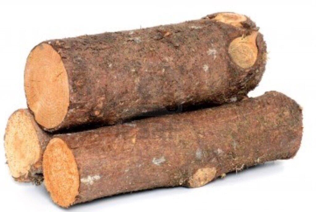 Cut Wood Logs ~ Freshly cut apple wood logs in kinross perth and