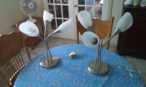 Two adjustable stainless steel lamps