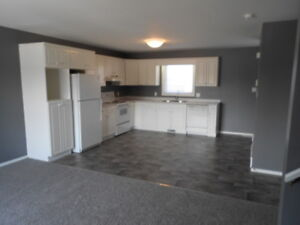 Spacious 2 Bedroom House in Steinbach Available Now!