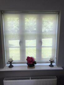 blinds 2 go privacy blind