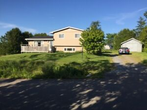 House for sale - Selling below appraisal value.