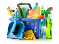 Domestic House Cleaner I can help you