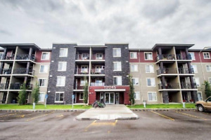 NEWER ~ 2 bed, 2 bath Condo ~ ONLY $1100!!