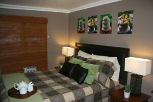 Beautifully Decorated-Furnished-All inclusive-Bachelor