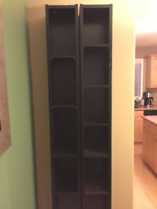 Skinny, tall black shelves