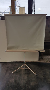 Delight Projection Screen