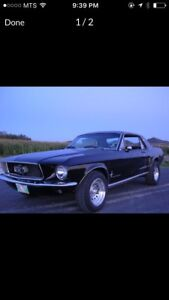 Looking for my 67 Mustang